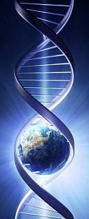 Проведем ДНК экспертизу по всему Миру